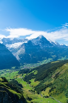 Grindelwald, village, alpes, montagne, suisse