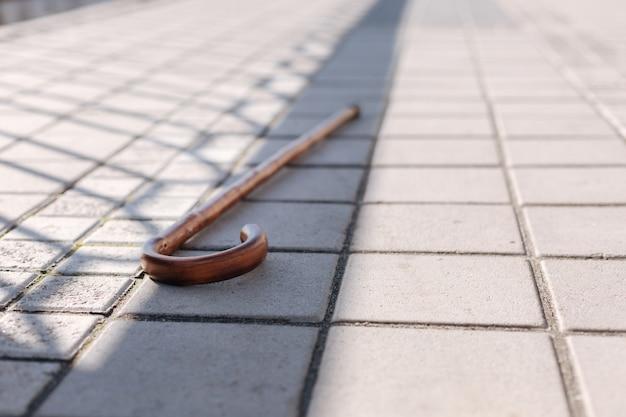 Gros bâton droit en bois abandonné sur le terrain