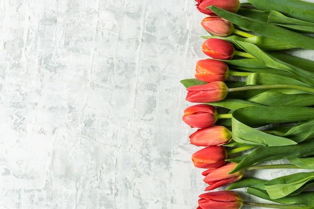 Gros bouquet de fleurs de tulipes printanières sur fond de béton blanc.