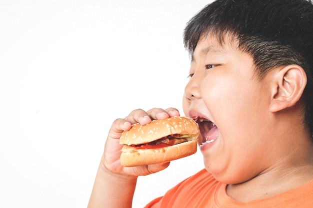 Gros garçon asiatique mange des hamburgers. concepts alimentaires qui causent des problèmes de santé physique aux enfants provoquant des maladies faciles comme l'obésité fond blanc. isolé. copie espace
