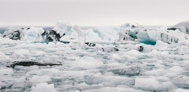 Gros icebergs détachés de la langue d'un glacier atteignant la côte
