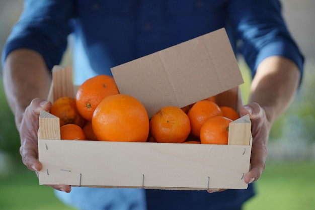 Gros plan d'agriculteur local détenant des oranges et des clémentines biologiques dans une caisse avec signe biologique