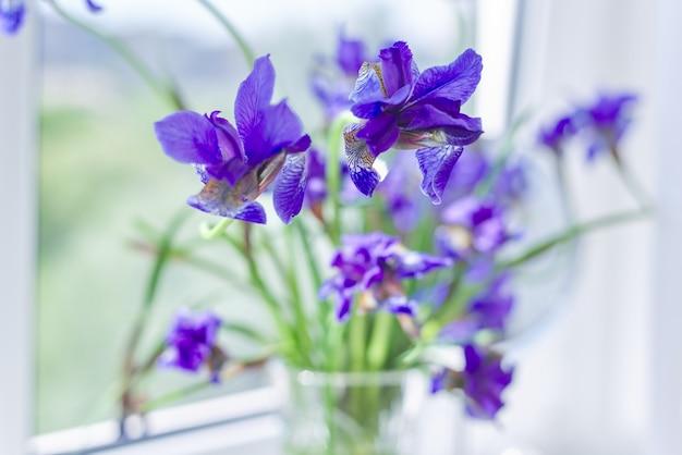 Gros plan de beaux iris violets bleus dans un vase sur la fenêtre.