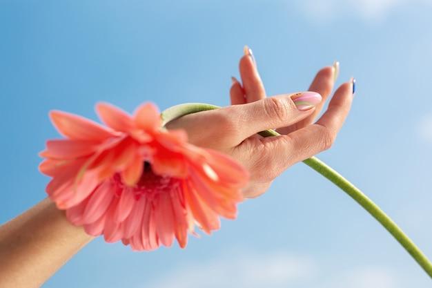 Gros plan de la belle main féminine sophistiquée avec fleur rose sur fond de ciel. concept de soin des mains, anti-rides, crème anti-âge, spa.