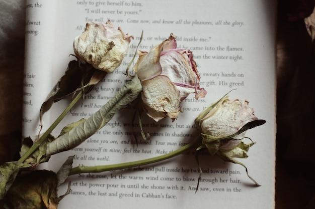 Gros plan de belles fleurs séchées sur un livre ouvert