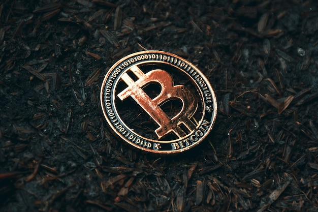 Gros plan de bitcoin sur le terrain, concept d'argent virtuel de crypto-monnaie