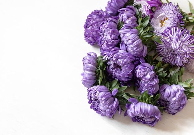 Gros plan d'un bouquet de chrysanthèmes bleus frais sur fond blanc, espace de copie.