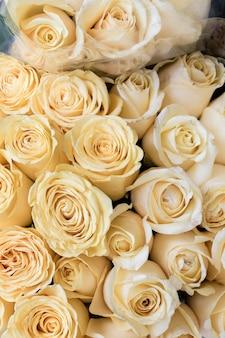 Gros plan bouquet de roses blanches