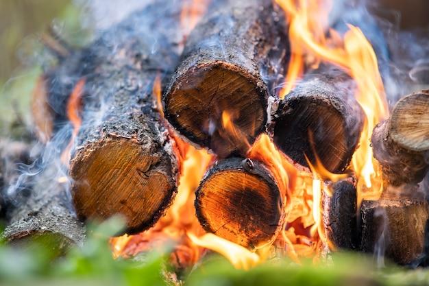 Gros plan de bûches de bois brûlant avec des flammes de feu jaunes chaudes.
