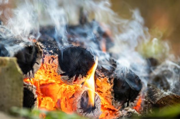 Gros plan sur des bûches de bois brûlantes avec des flammes de feu jaunes et chaudes.