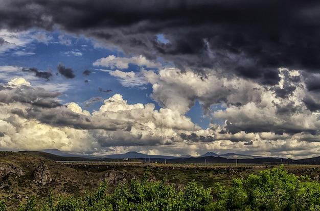 Gros plan d'un champ sous le ciel nuageux