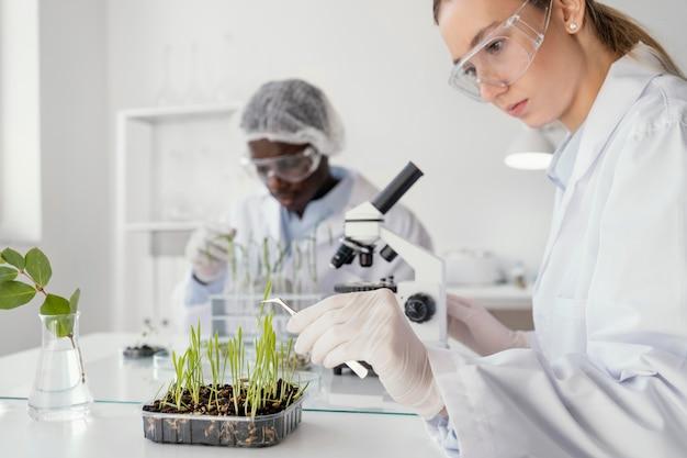 Gros plan des chercheurs en laboratoire