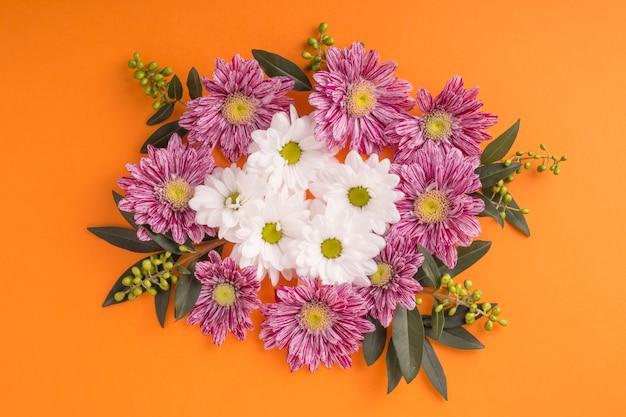Gros plan, de, chrysanthème, à, pâquerette, fleurs, sur, a, fond orange