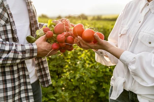 Gros plan, couple, legumes