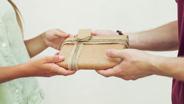 Gros plan, couple, tenue, cadeau, devant, plaine, fond