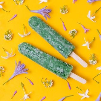 Gros plan de la crème glacée popsicle maison aux saveurs de menthe et de kiwi