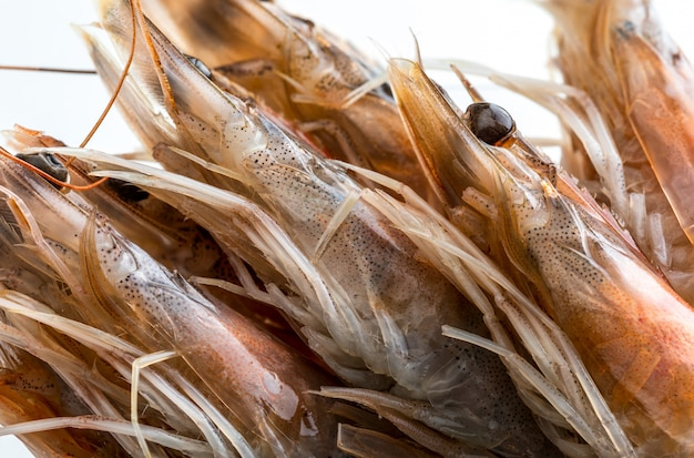 Gros plan de crevettes fraîches, crues et entières.
