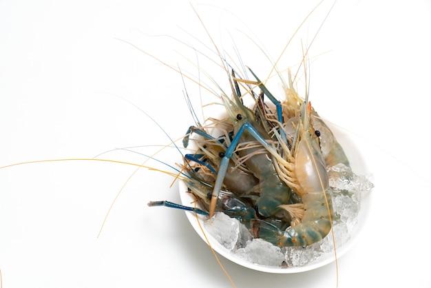 Gros plan crevettes fraîches isolé sur fond blanc