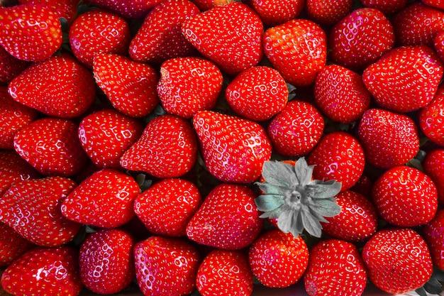 Gros plan de délicieuses fraises rouges fraîches
