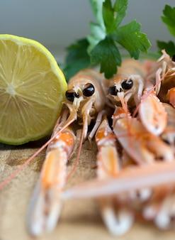 Gros plan de délicieux langoustines