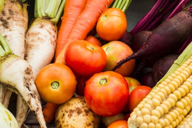 Gros plan de délicieux légumes du jardin