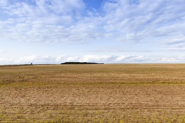 Gros plan sur le domaine agricole
