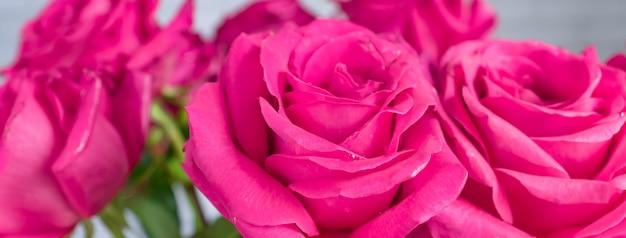 Gros plan du beau bouquet de roses roses. bannière