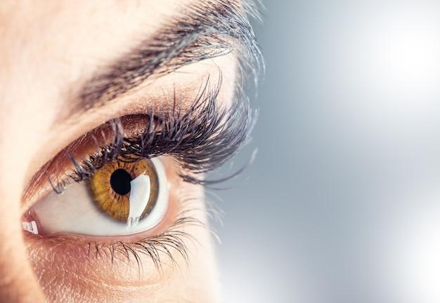 Gros plan du bel œil féminin de la femme.