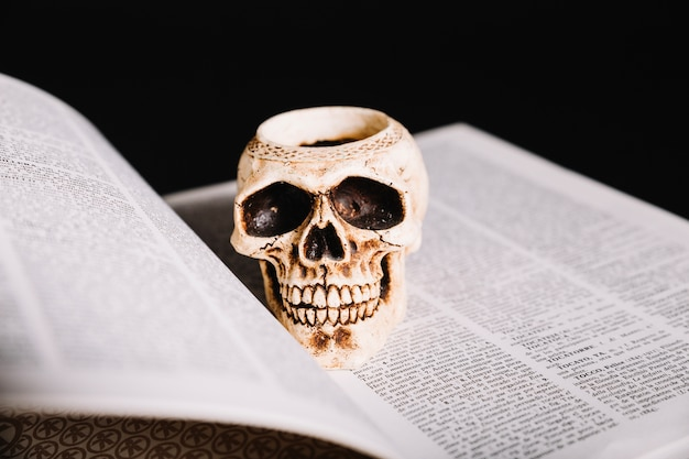 Gros plan du crâne sur le livre