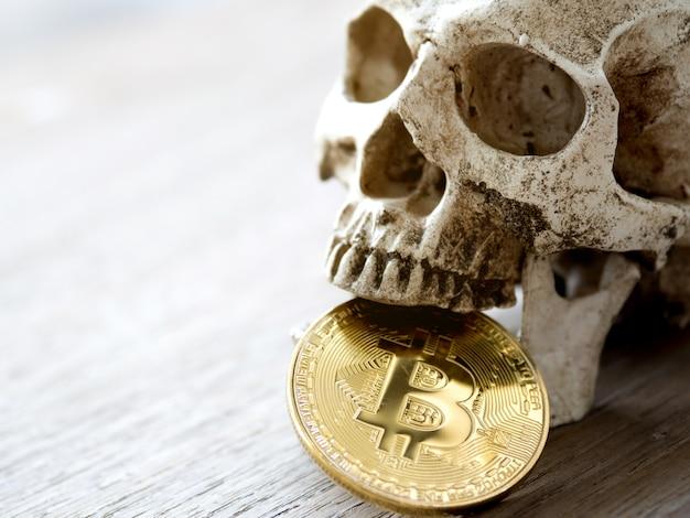 Gros plan du crâne mordant bitcoin doré sur une table en bois.