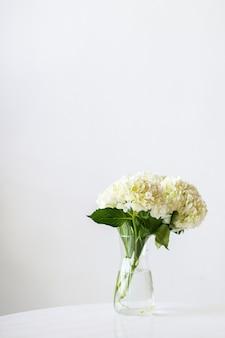Gros plan du modèle social d'hortensias blancs