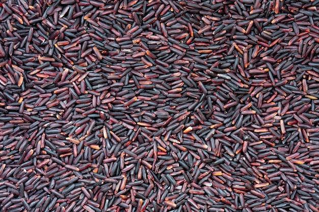 Gros plan du riz riceberry violet brut c'est un croisement entre thai