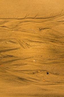 Gros plan du sable avec des voies de marée et des coquillages sur le fond de texture plein cadre