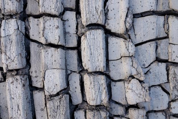 Gros plan du sol fissuré et boueux dans les textures de la saison sèche, les motifs et la texture du sol fissuré du sol de terre séchée ensoleillée, le fond du sol de terre craquelée séchée, la texture de la terre sèche et fissurée
