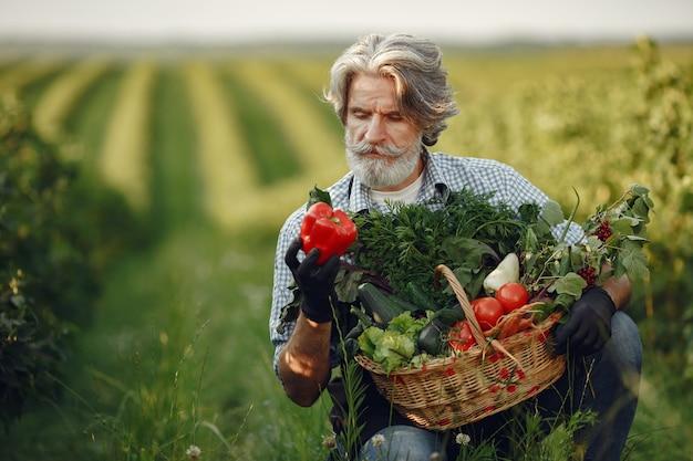Gros plan du vieux fermier tenant un panier de légumes. l'homme est debout dans le jardin. senior dans un tablier noir.