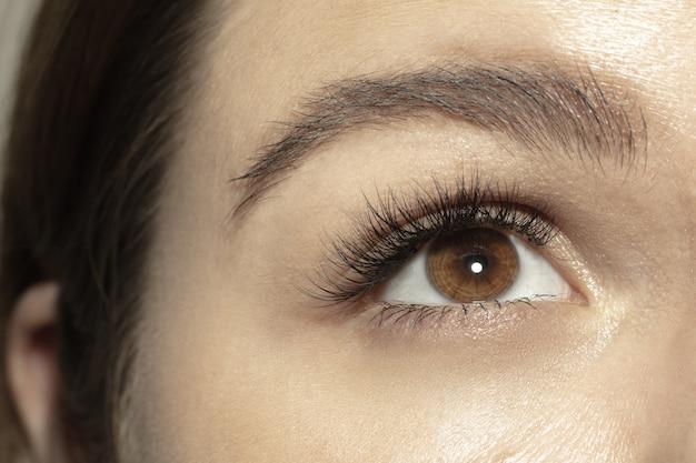 Gros plan du visage de la belle jeune femme caucasienne se concentrer sur les yeux