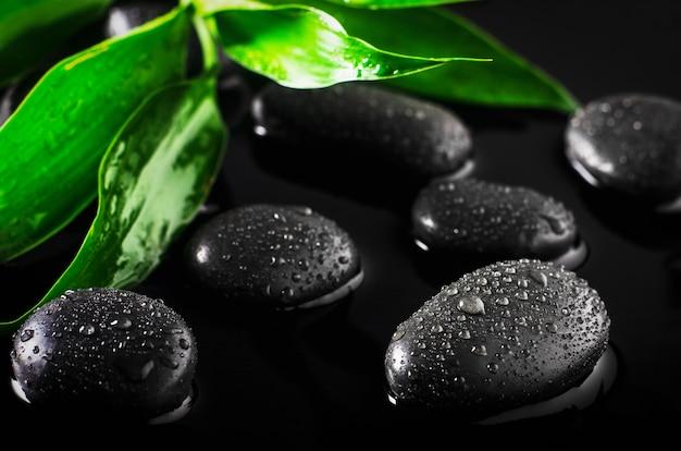 Gros plan d'eau tombe sur des pierres noires avec des feuilles vertes