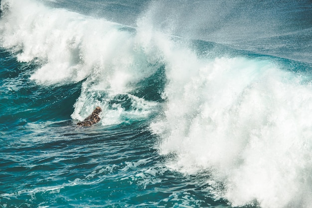 Gros plan éclaboussant, laissant tomber la vague de l'océan. bali.
