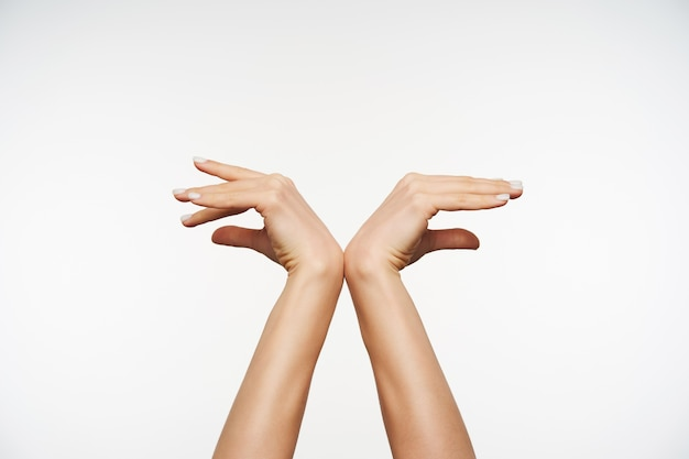 Gros plan sur d'élégantes mains levées s'appuyant les unes sur les autres tout en formant le geste des ailes d'oiseaux