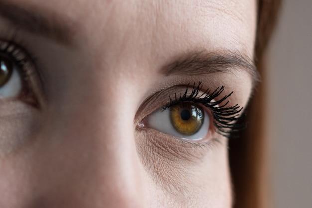 Gros plan extrême de l'oeil humain brun en technique de faible luminosité.
