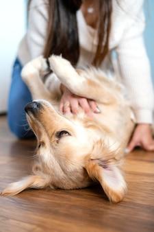 Gros plan, femme, caresser, chien