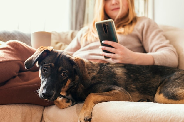 Gros plan femme et chien sur canapé