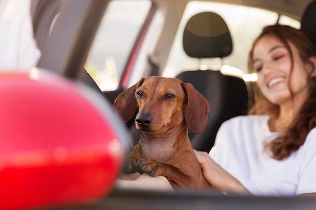 Gros plan femme heureuse avec chien mignon