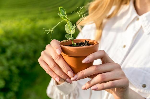 Gros plan, femme, plante, pot