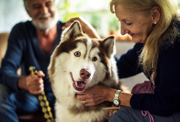Gros plan d'une femme senior caresser husky sibérien