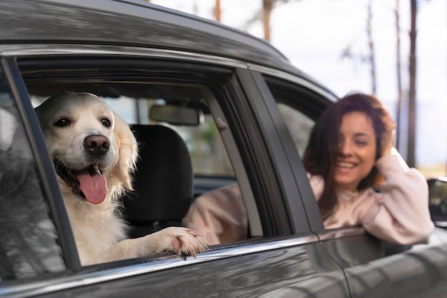 Gros plan femme souriante avec chien en voiture