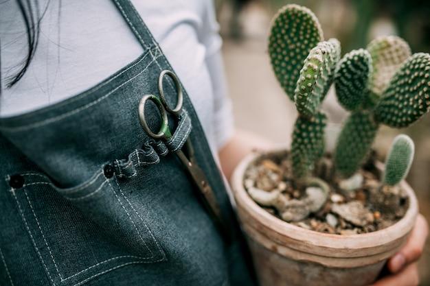 Gros plan de femme tenant un pot en céramique avec cactus
