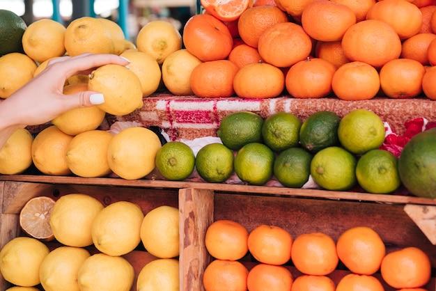 Gros plan, femme, tenue, citron