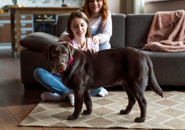 Gros plan des femmes et des chiens à la maison