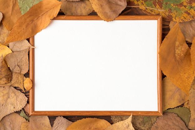 Gros plan, feuilles, autour, cadre